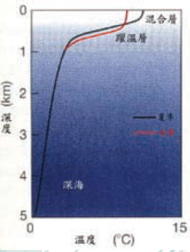 海水垂直結構